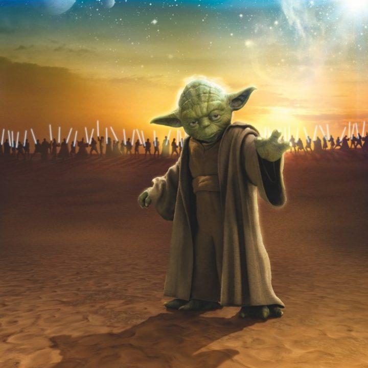 4-442 - Star Wars Master Yoda