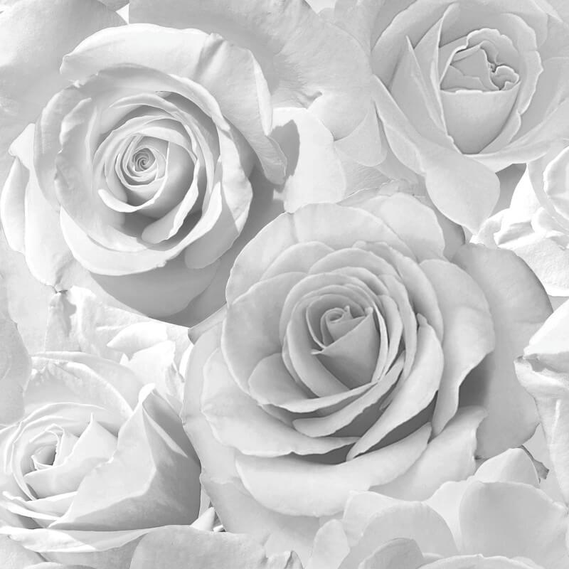 Rose Glitter Wallpaper 139520 Silver